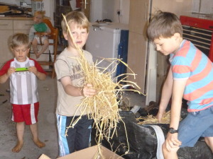Filling the outer box with straw